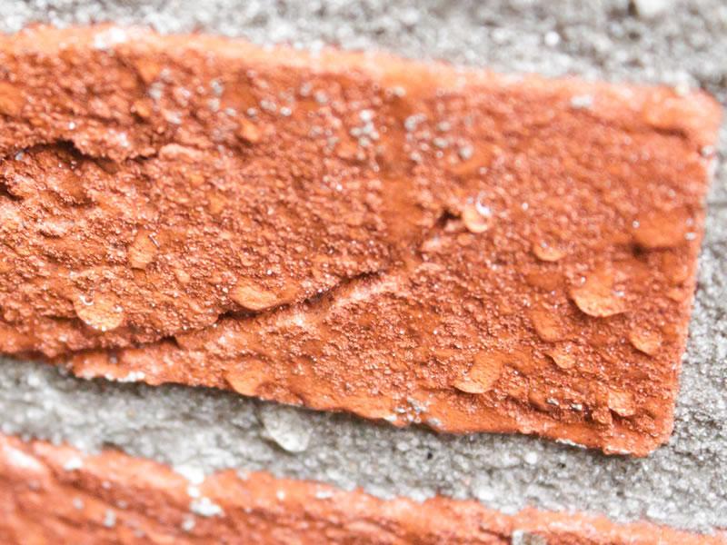 iso-dry-creme-extreme-winschoten-na-behandeling-iso-paint